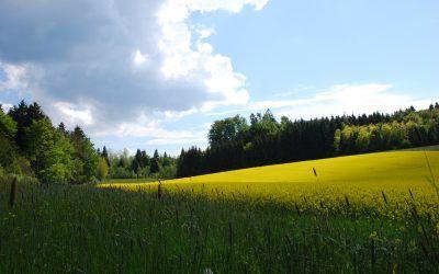 Le PNP Jorat : enjeux et opportunités pour l'agriculture
