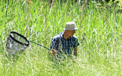 Recherche sur la thématique de la biodiversité
