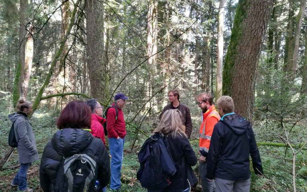 Sensibilisation des publics aux différentes fonctions de la forêt