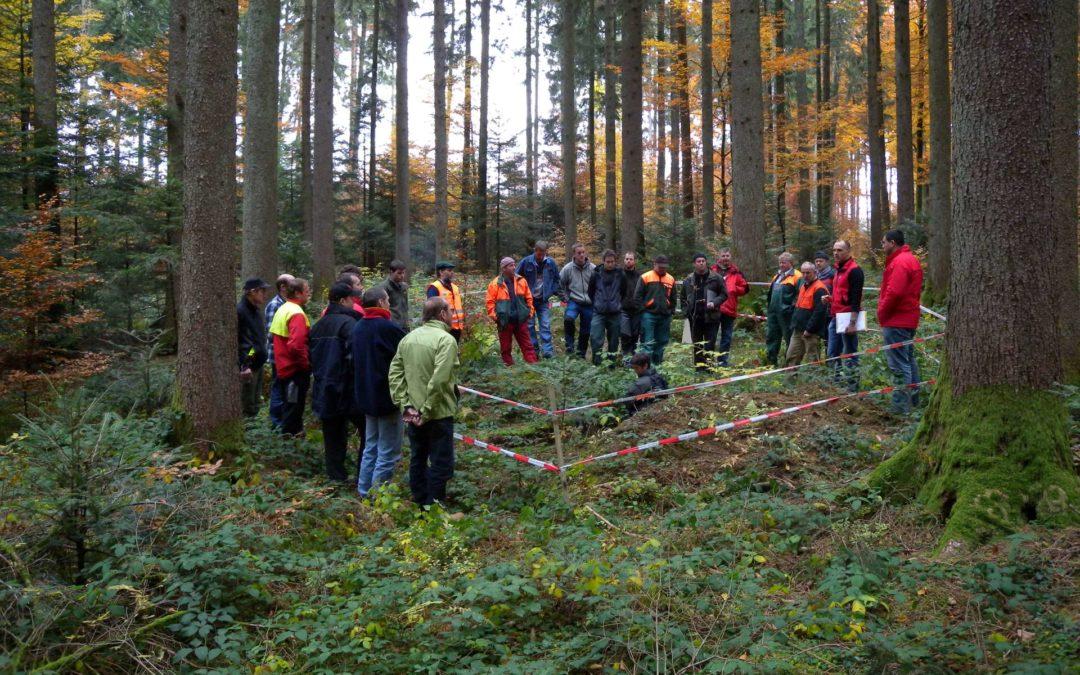 Coordination et formation des équipes forestières en gestion des réserves et entretien des biotopes